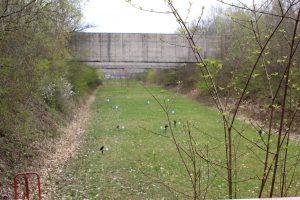 Field Target Silhouetten bei den Bergab Lanes in Ebern