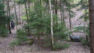Field Target Lane Wiesbaden ohne Ziele Bogensport 3D Ziele