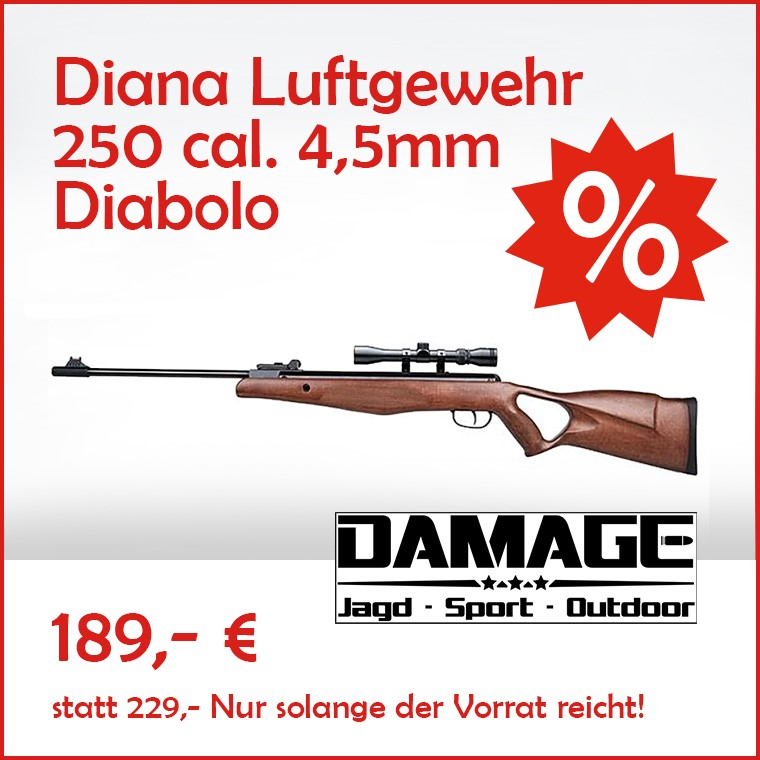 damage_ads